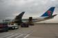 供应深圳到迪拜航空公司  020-86548367